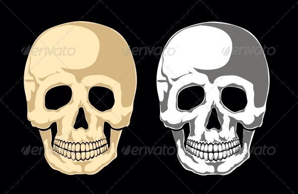 Skull - Health/Medicine Conceptual