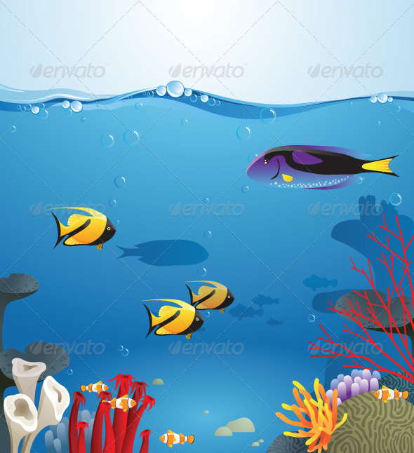 Underwater Life - Landscapes Nature