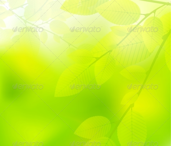 Green Leaves Nature Design - Flowers & Plants Nature