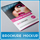 Brochure / Folder Mock-up  - GraphicRiver Item for Sale