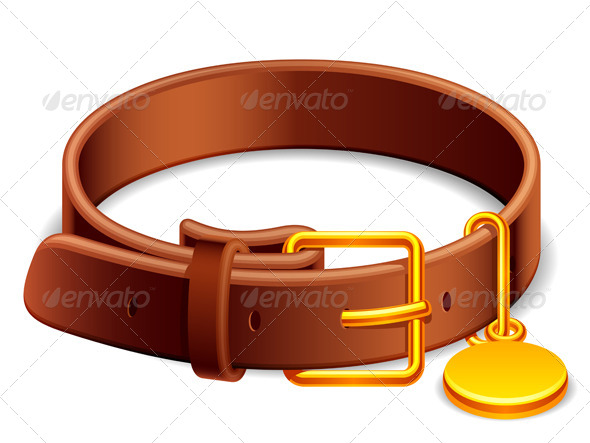 Dog Collar - Animals Characters