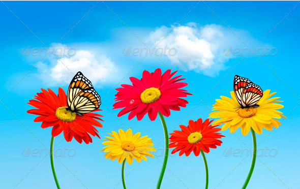 Flowers with Butterflies - Flowers & Plants Nature