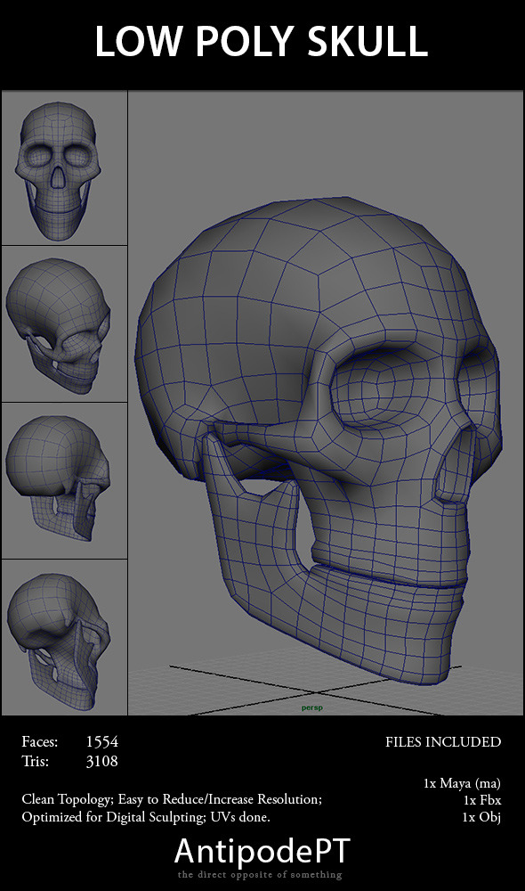 Low Poly Skull By Antipodept 3docean