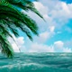 The Ocean And Palm Trees On The Edges - VideoHive Item for Sale