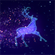 Christmas Magic Reindeer Background - VideoHive Item for Sale