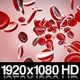 Stream Of Red Blood Cells In Front - VideoHive Item for Sale