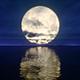Full Moon on Horizon - VideoHive Item for Sale