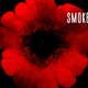 Smoke Impact - VideoHive Item for Sale