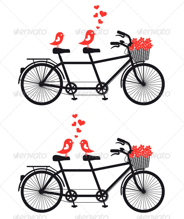 Tandem Bicycle with Love Birds - Animals Characters