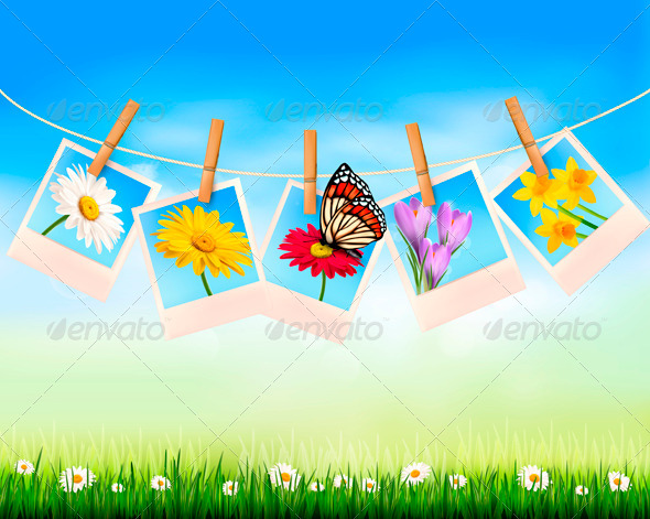 Nature Background with Photo with Flowers  - Flowers & Plants Nature