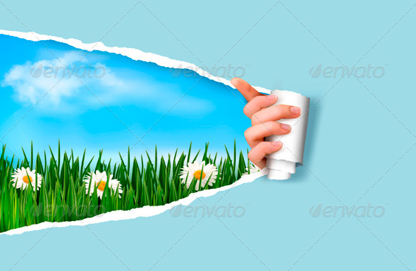 Nature Background with Green Grass and Sky - Seasons Nature