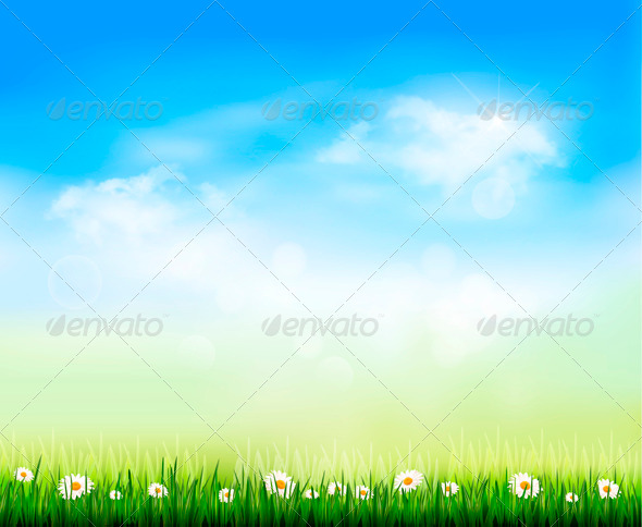 Nature Background with Green Grass and Flowers - Flowers & Plants Nature