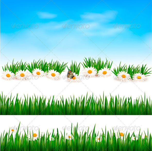 Collection of Green Grass Backgrounds - Flowers & Plants Nature