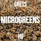 Microgreens Cress 1 - VideoHive Item for Sale