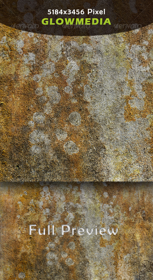 Wall-Fungus - Textures