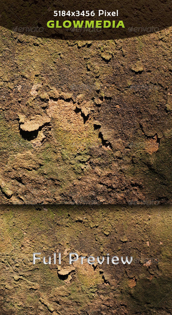 Cracked Wall - Nature Textures