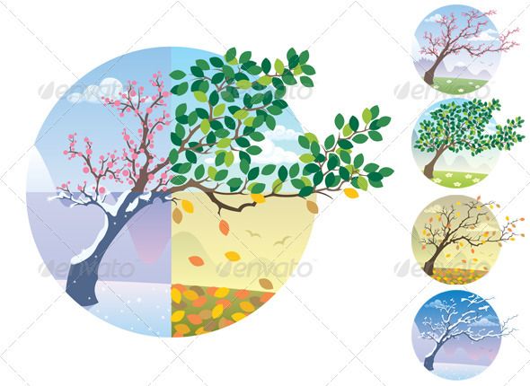 Seasons Cycle Set - Seasons Nature