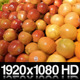 Fruit Selection at a Grocery Store - VideoHive Item for Sale