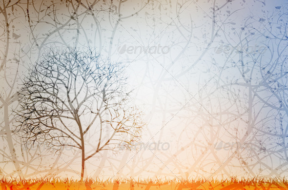 Lonely Tree - Nature Conceptual