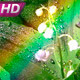 Lylyes And Rainbow - VideoHive Item for Sale