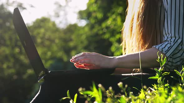 Close-up of Woman Hands Open Notebook and Typing, Woman Use Laptop at Sunset in Park
