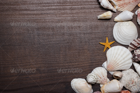 Seashells On The Brown Wooden Background - Stock Photo - Images