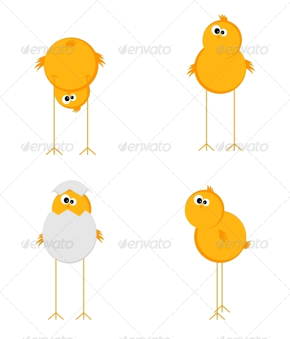Four Chick - Animals Characters