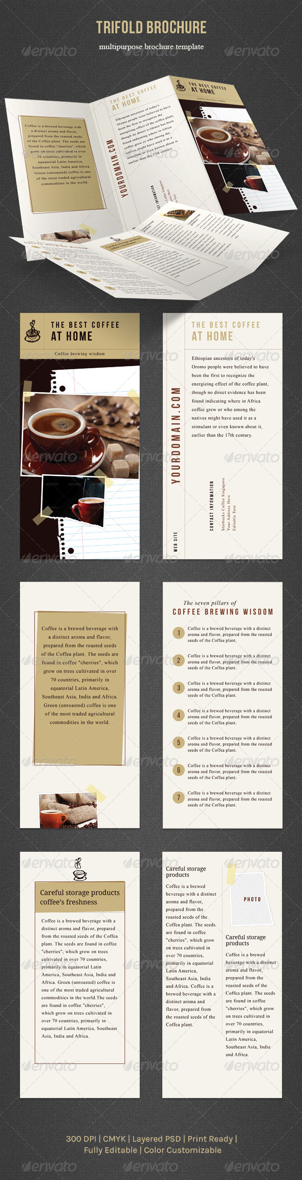 Trifold Brochure - Informational Brochures