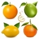 Citrus Fruits Vitamin C - GraphicRiver Item for Sale