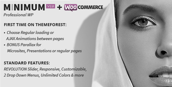 MINIMUM – Professional WordPress Theme
