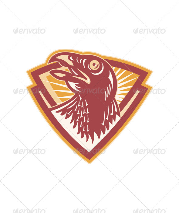 Hawk Head Shield Retro - Animals Characters