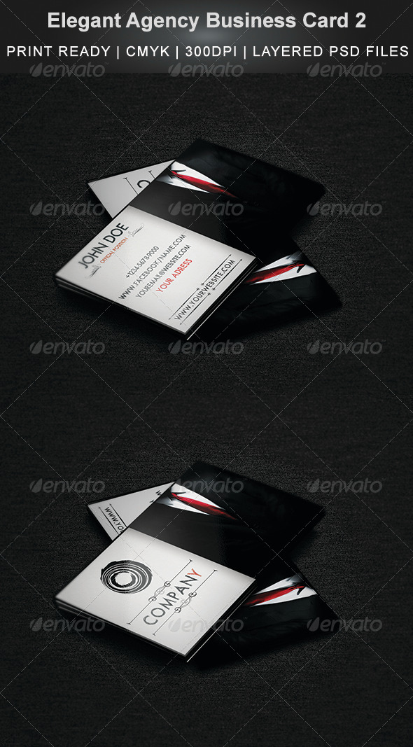 Elegant Agency Business Card 2 - Creative Business Cards