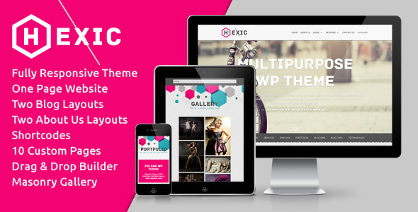 Hexic – Multipurpose One Page Responsive WP Theme