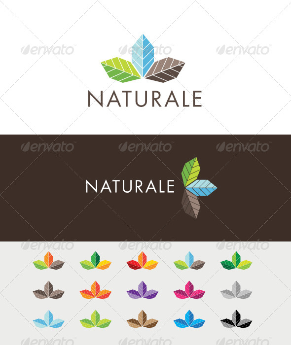 Naturale Colors Logo - Nature Logo Templates