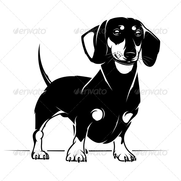 Dachshund Dog - Animals Characters