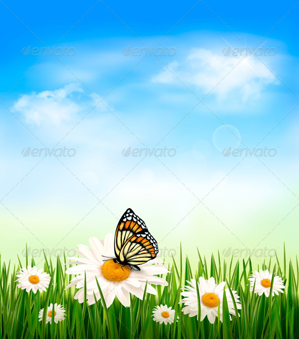 Nature Background with Grass and Butterfly - Flowers & Plants Nature