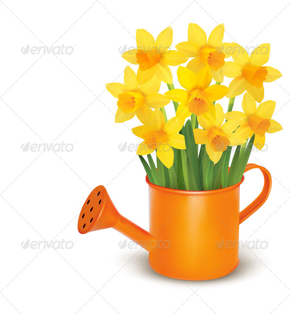 Spring Flowers with Watering Can - Flowers & Plants Nature