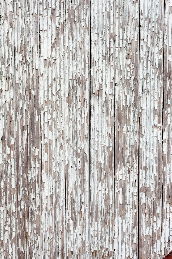 Grungy White Background Of Natural Wood By H2oshka