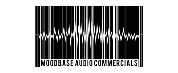 Audiojungle badge
