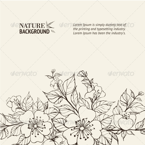 Flower Background. - Flowers & Plants Nature