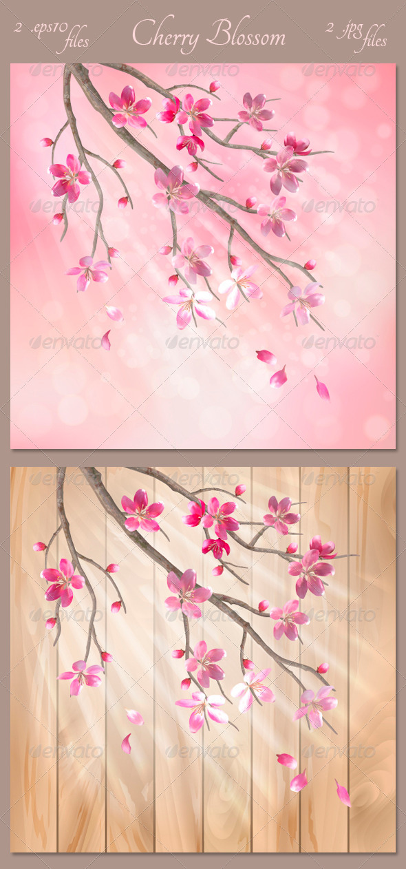 Spring Vector Tree Branch Cherry Blossom Flowers - Seasons Nature