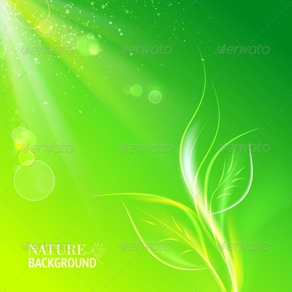 Green Leaves, Bright Sun. - Flowers & Plants Nature