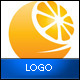 Orange Logo Template - GraphicRiver Item for Sale