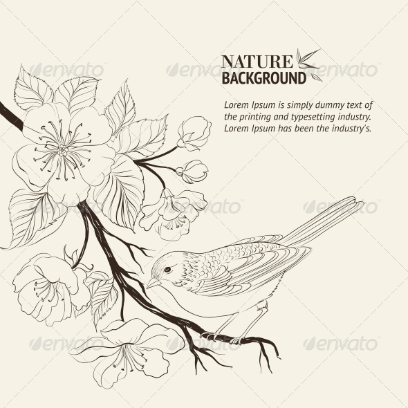Hand Drawn Bird on Sacura Branch. - Flowers & Plants Nature