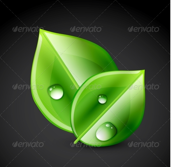 Green Leaf Ecology Concept - Flowers & Plants Nature