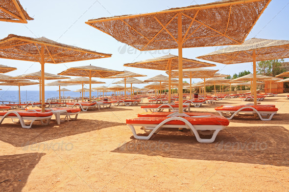 red sand in Sharm El Sheik beach - Stock Photo - Images
