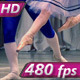 Pas de deux - VideoHive Item for Sale