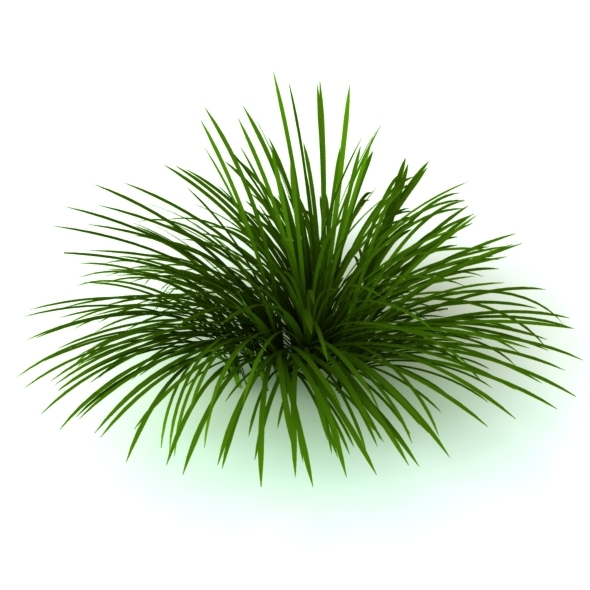 3D Model Wild grass - 3DOcean Item for Sale