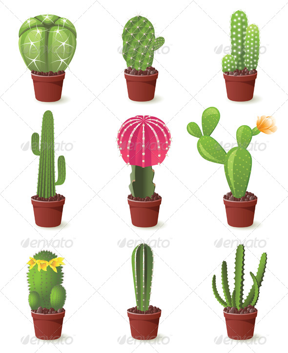 Cactuses Icons - Flowers & Plants Nature