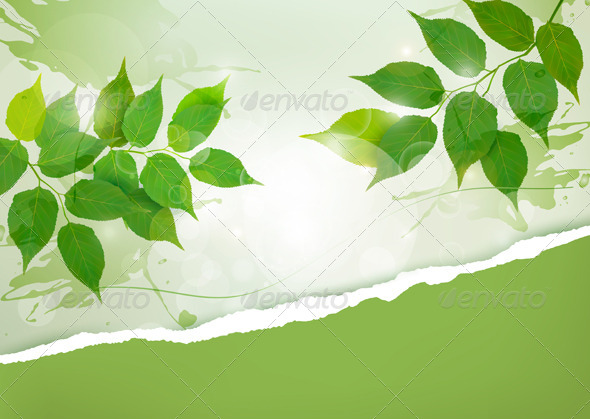 Nature background with green spring leaves - Flowers & Plants Nature